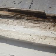 vermodertes Holz